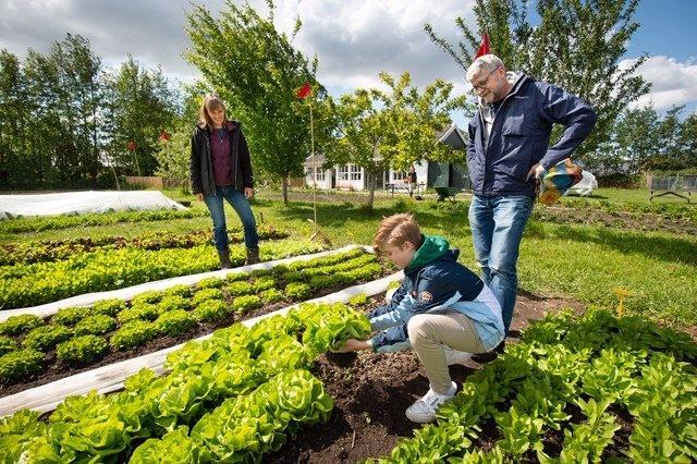 Rondleiding voor groentedeelnemers 2021